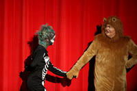 DHS Wizard of Oz November 18, 2016 Performance