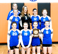 MS SCAA Volleyball Tourn Winners 2015