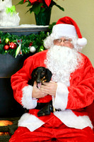 Photos with Santa at Muddy Paws 2016 Album 2 of 2