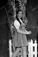 DHS Wizard of Oz November 17, 2016 Performance